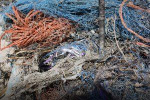 Déchets plastiques dans les océans