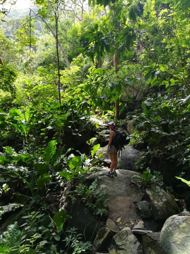 Randonnée dans le Parc Tayrona en Colombie